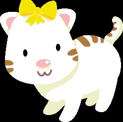 Bondigo Kedi
